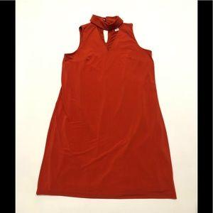 🦈 Lindon Times rust dress 6